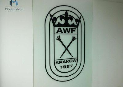 Grafika Na Szkle AWF Krakow