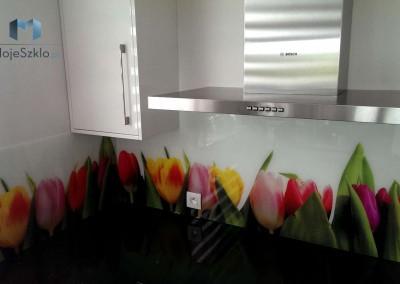Kuchnie Aranzacje Panele Szklane