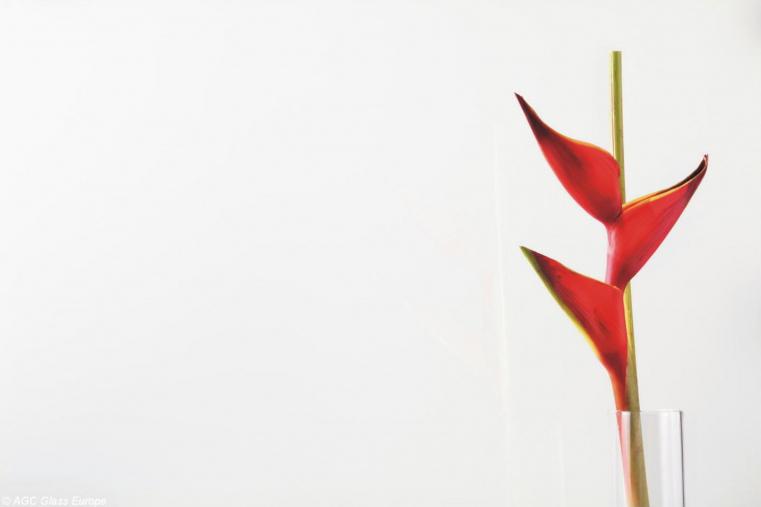 Lacobel Kolory Delikatna Biel 9010 - Lacobel kolory. Wzornik dostępnych odcieni