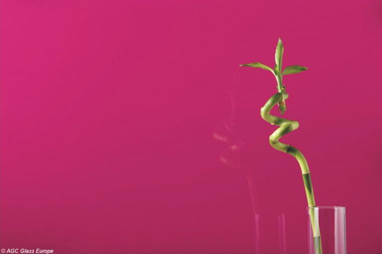 Lacobel Kolory Fuksja 4006 - Lacobel na wymiar - odcienie czerwieni i różu