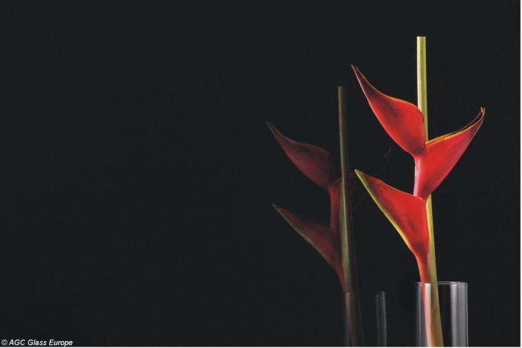 Lacobel Kolory Gwiazdzista Czern 0337 - Czarny lacobel w nowoczesnej kuchni