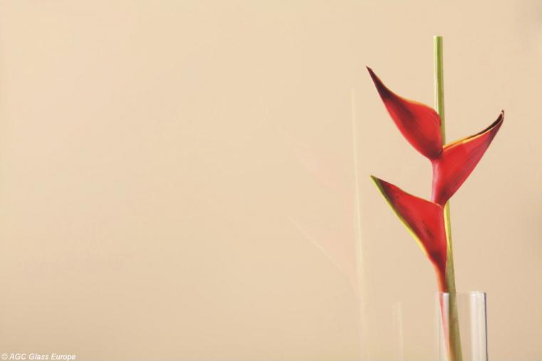 Lacobel Kolory Jasny Bez 1015 - Lacobel w kuchni o odcieniach brązu i beżu