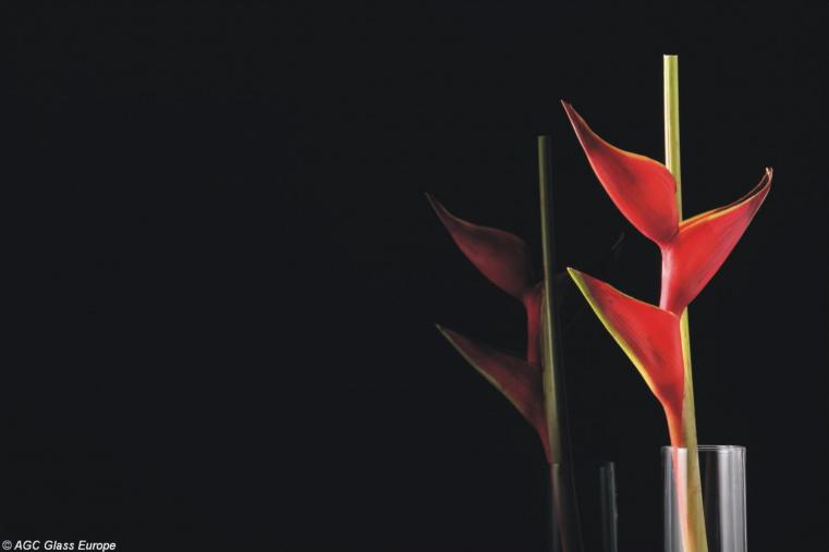 Lacobel Kolory Klasyczna Czern 9005 - Czarny lacobel w nowoczesnej kuchni
