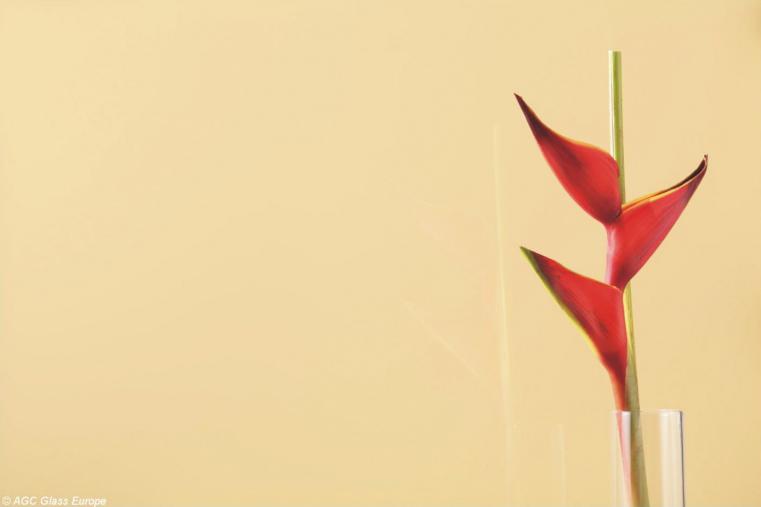 Lacobel Kolory Klasyczny Bez 1014 - Lacobel w kuchni o odcieniach brązu i beżu