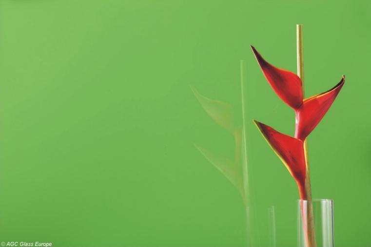 Lacobel Kolory Lsniaca Zielen 1164 - Lacobel kolory. Wzornik dostępnych odcieni