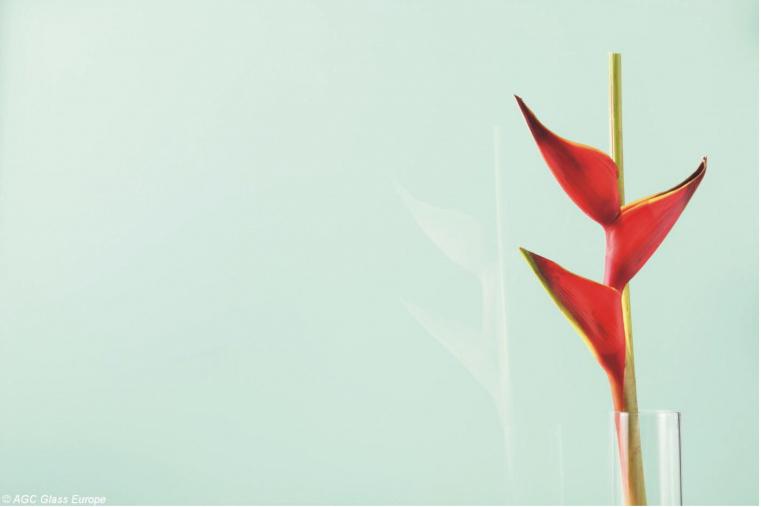 Lacobel Kolory Pastelowa Zielen 1604 - Lacobel kolory. Wzornik dostępnych odcieni