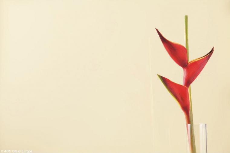 Lacobel Kolory Perlowa Biel 1013 - Lacobel kolory. Wzornik dostępnych odcieni