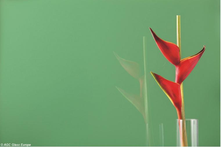 Lacobel Kolory Zielen Dzungli 0667 1 - Lacobel kolory. Wzornik dostępnych odcieni