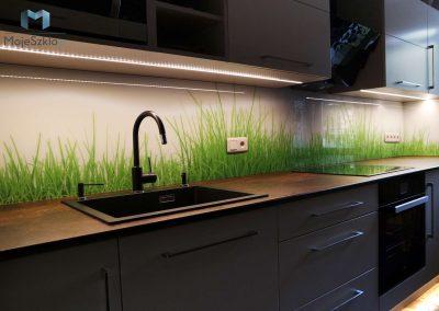 Szklo Grafika Kuchnia Trawy