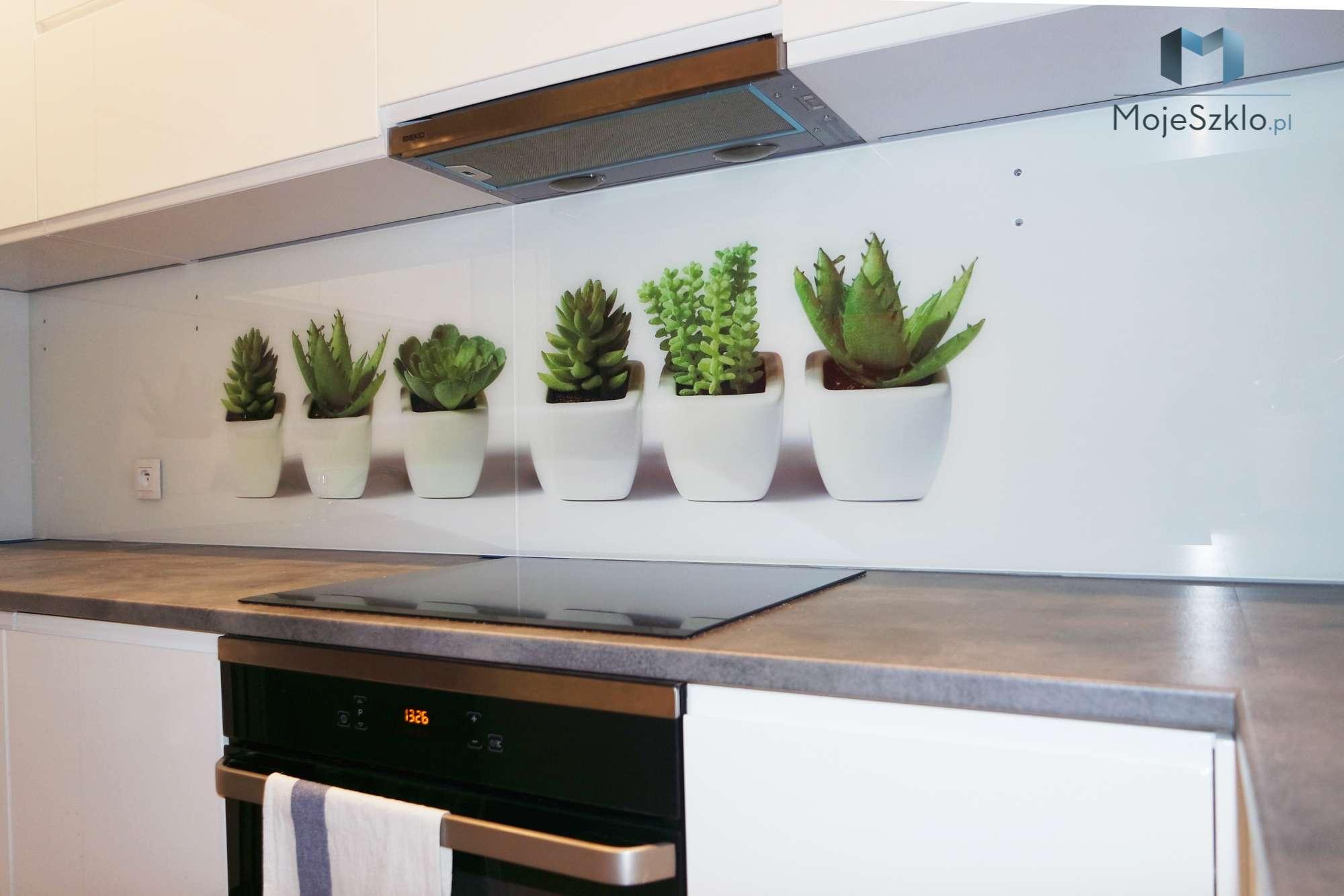 Szklo Ozdobne Grafika Kaktusy 1 - Szyba do kuchni z motywem kwiatów