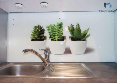 Szklo Ozdobne Kuchnia Kaktus