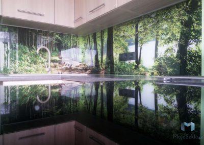 Szklo W Kuchni Drzewa