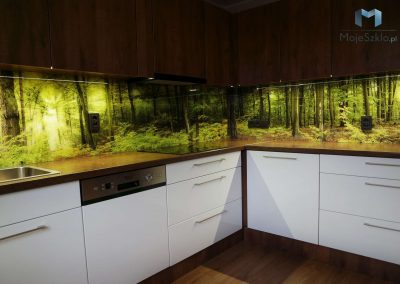 Szklo W Kuchni Drzewa Las
