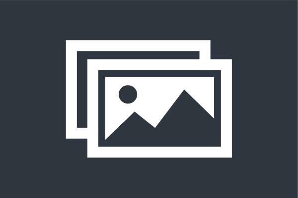 Szklo Z Grafika Dostepne Motywy - Szklane drzwi z grafiką. Drzwi wewnętrzne na wymiar
