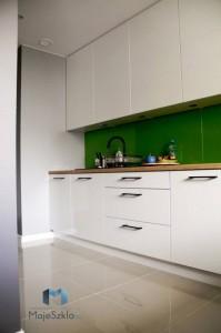 panele-szklane-lacobel-kuchnia-lakobel-pastelowa-zielen-1164-glass